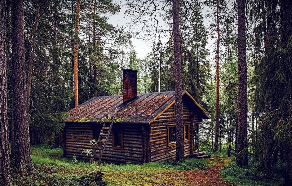 Blockhütte im Wald