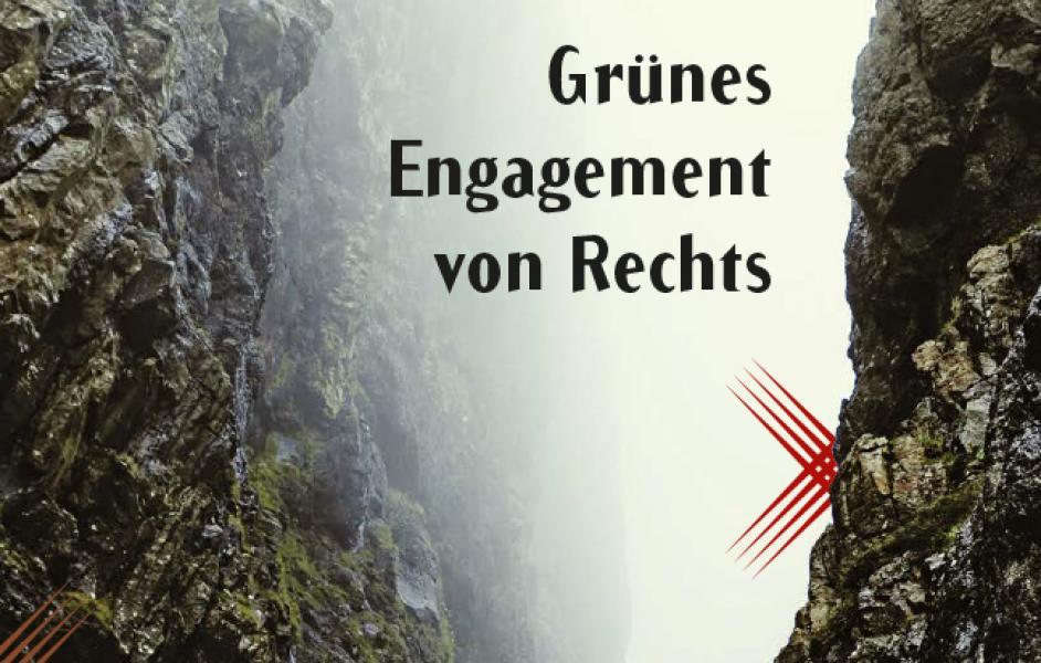 """Foto Schlucht im Nebel mit Titel: """"Grünes Engagement von Rechts"""""""
