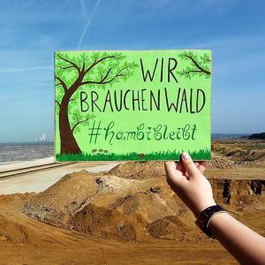 """Hand hält Schild mit Text: """"Wir brauchen Wald. #hambi bleibt"""""""